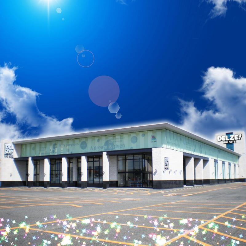 デルゼビッグサイト新潟東店の店舗画像